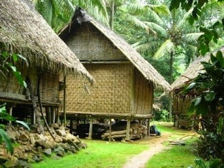 Village, Tribe, View, Indonesia