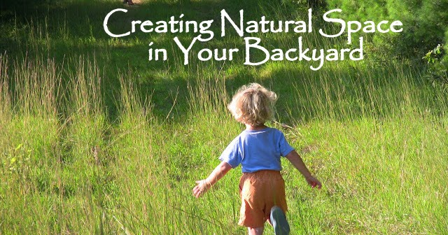 The Backyard Farming Connection: Creating Natural Space in ...