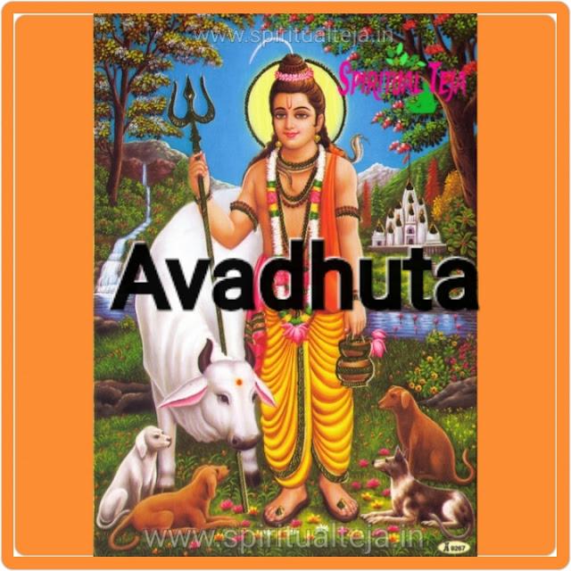 Avadhuta, dattavadhuta, parabrahma tattva, guru shishya relationship, Spiritual, spiritual Teja, Sri satupasi, guru parampara, incarnation,