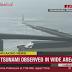 Ιαπωνία: Αναμένουν Τσουνάμι τουλάχιστον τριών μέτρων οι αρχές (Βίντεο)