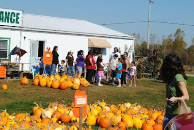 The Best Hayrides and Pumpkin Patches Near Bay City