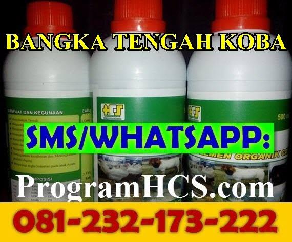 Jual SOC HCS Bangka Tengah Koba