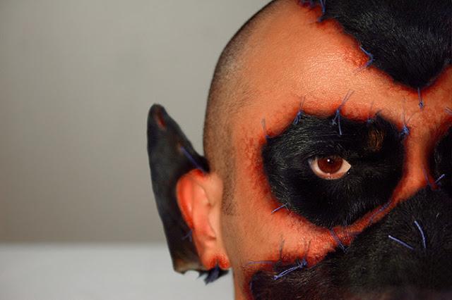 artistas bizarros, obras de arte macabras, obras de arte bizarras, arte macabra, arte contemporânea, arte escatológica, coisas assustadoras, fantasia de compensação, rodrigo braga, cachorro costurado no rosto, coisas perturbadoras