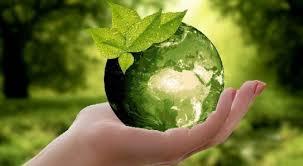 पर्यावरणीय चिंतन