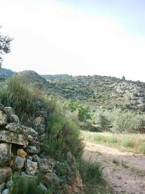 La pileta, camino, pantano de Pena, embalse, finca, almendros, olivos 30
