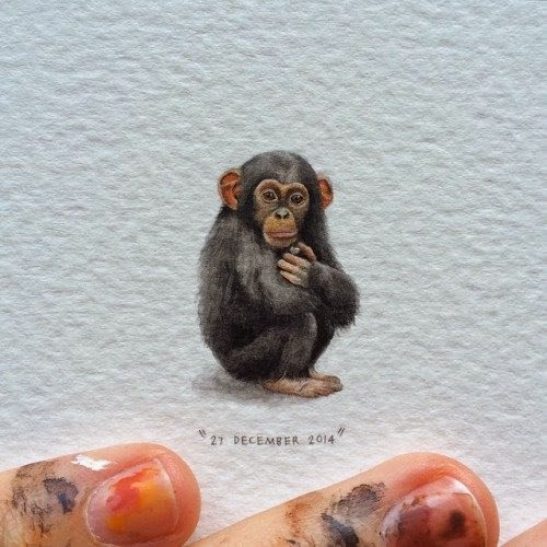 02-Chimpanzee-Lorraine-Loots-Miniature-Paintings-Commemorating-Special-Occasions-www-designstack-co