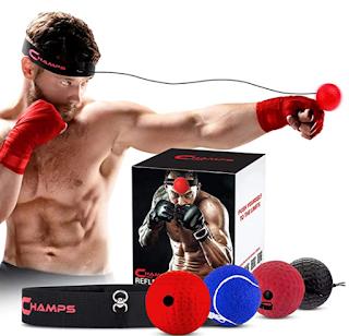 workout ball, home boxing ball, punching ball