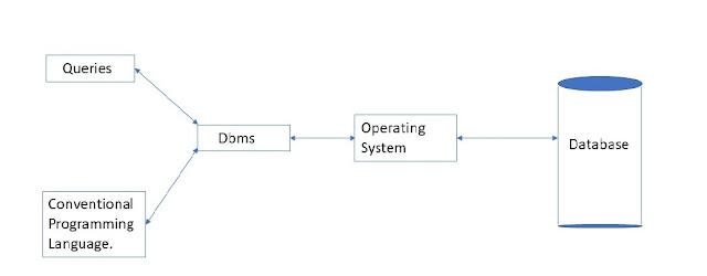 DBMS stunext