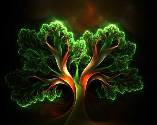 CH.LA FLOR DE LA VIDA: El árbol De La Vida