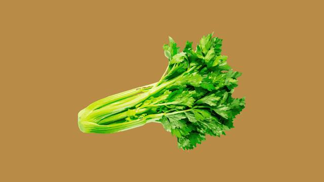 7 Benefits of Drink Celery Juice