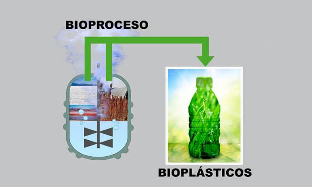 Bioproceso de los bioplásticos