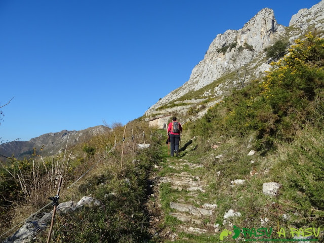 Sendero hacia el Paisanu desde Alevia