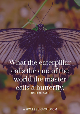What the caterpillar calls the end of the world the master calls a butterfly. __ Richard Bach