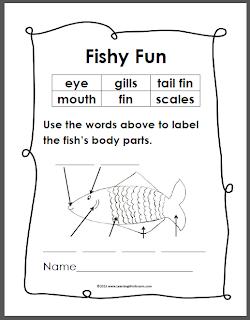 learning ideas grades k 8 simple fish anatomy diagram. Black Bedroom Furniture Sets. Home Design Ideas