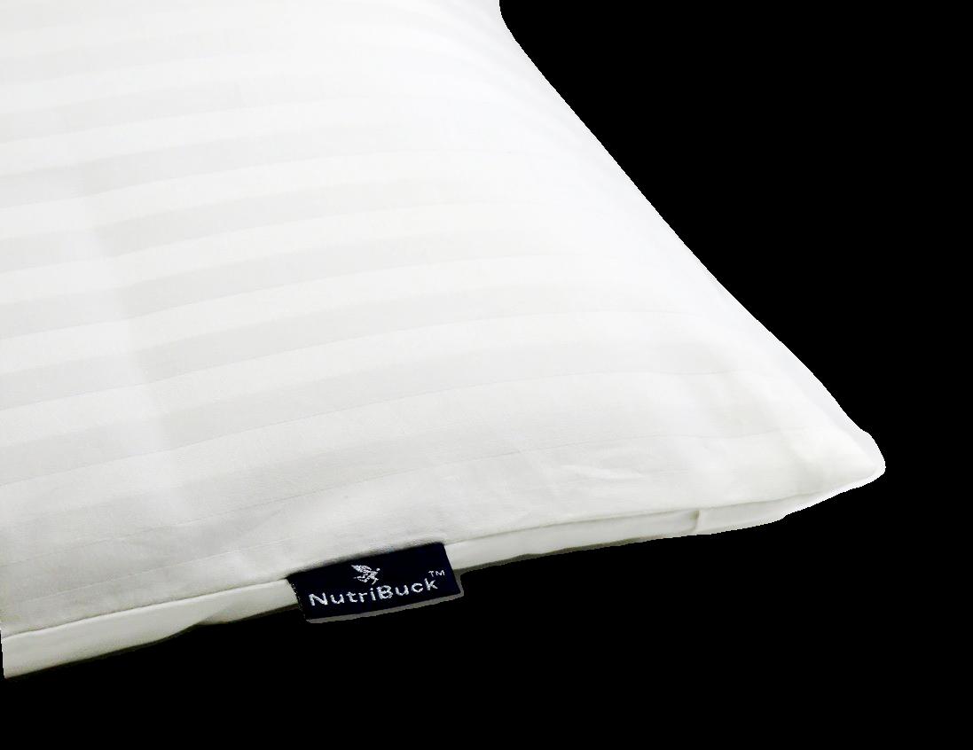 nutribuck buckwheat pillow help you sleep better relief from neck