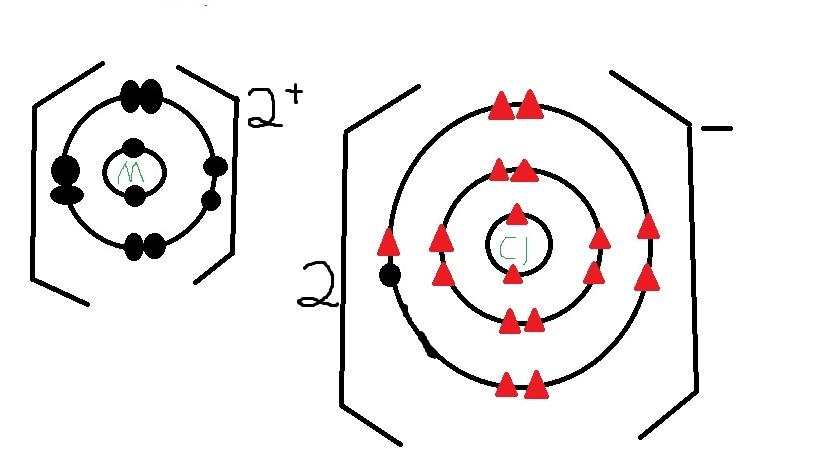2P1 class science blog: Chen Zhaofeng (04)