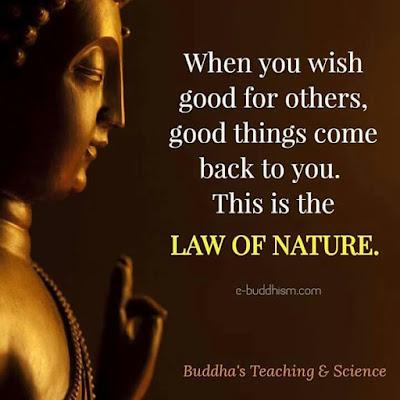 Nature Practice Quotes
