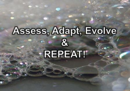 assess adapt evolve and repeat