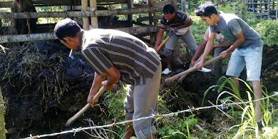Proses Awal Pembuatan Biogas