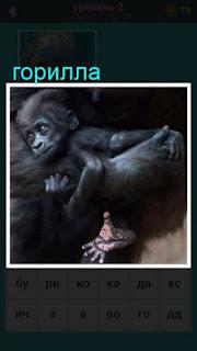 мать горилла на руках держит своего детеныша 667 слов 2 уровень