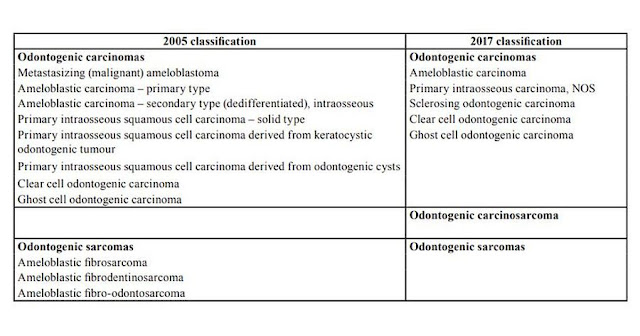 PDF: Analyses of odontogenic tumours: the most recent classification proposed by the World Health Organization (2017)