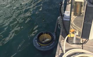 Al molo Dogana il primo Seabin del Sud Sardegna