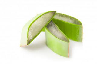 एलो- वेरा-आर्युवेदिक-चमत्कारी-औषधि, Aloe-Vera-Natural-Ayurvedic- Miracle- Remedies- in -Hindi, aloe-vera-benefits,