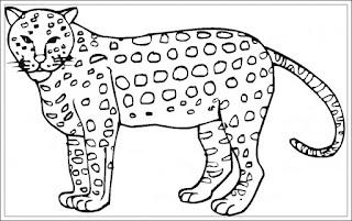 Ausmalbilder Gepard Kostenlos