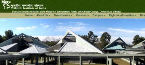 wildlife institute jobs_ichhori