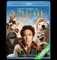 DOLITTLE (2020) 1080P HD MKV ESPAÑOL LATINO
