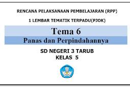 RPP PJOK PENJASORKES SD/MI Kelas 5 (RPP 1 Lembar) Semester 2