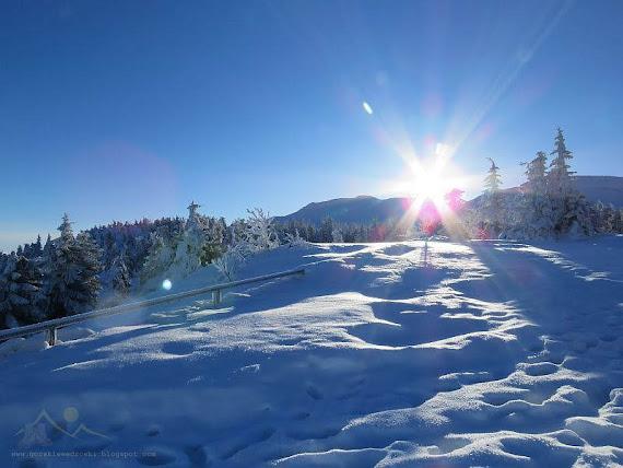 Spojrzenie z przełęczy w kierunku szczytu Diablaka.