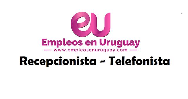 Recepcionista - Telefonista