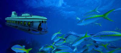 رحلة الغواصة السندباد الغردقة ، رحلة فى غاية الروعه و الجمال لازم تجربوها