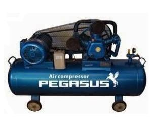 Máy nén khí Pegasus TM-W-0.67/8-330L