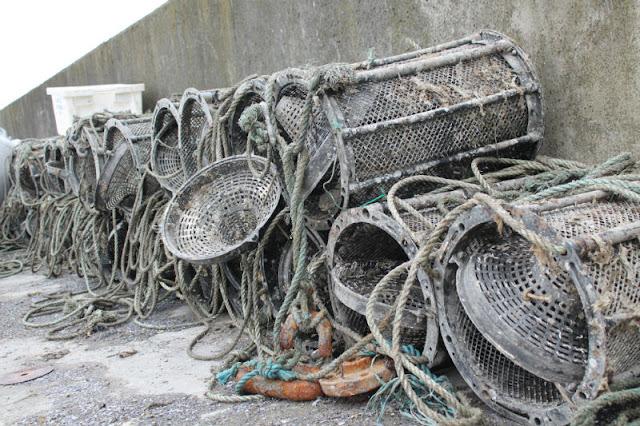 Shrimp pots Ardgroom pier Cork