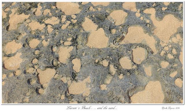 Larsen's Beach: ... and the sand...