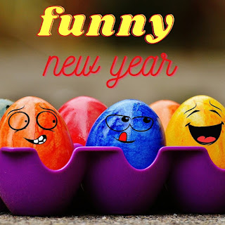 FUNNY NEW YEAR