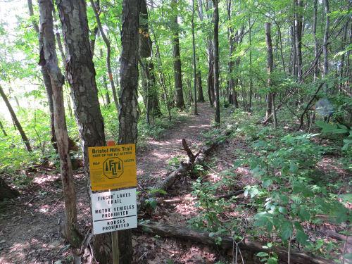 Bristol Branch Trail