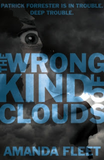 Cover of The Wrong Kind of Clouds