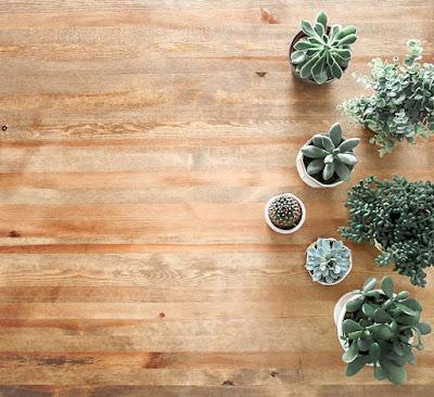خلفيات خشبية للتصميم بجودة عالية hd 1