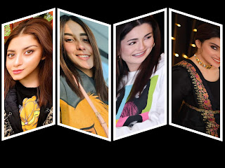 Top 5 most Searched Pakistani Showbiz Celebrities