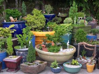 Növények és minikert a télikertben
