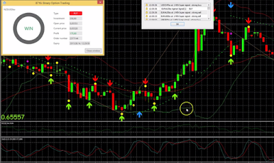 TOP5MINT Best Binary Options Indicator IQ Option Indicator 88% WIN RATIO LIVE TRADE