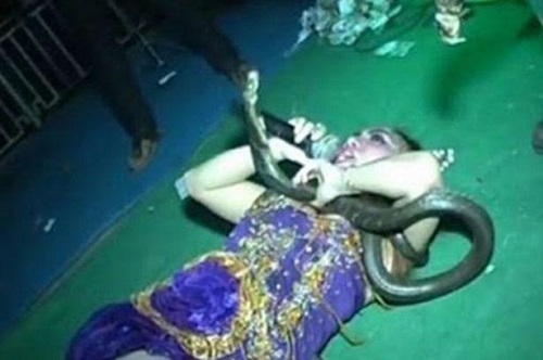Singer Who Wears Snakes During Live Performances Gets Bitten By One And Died On Stage