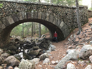 dog and woman under a stone bridge