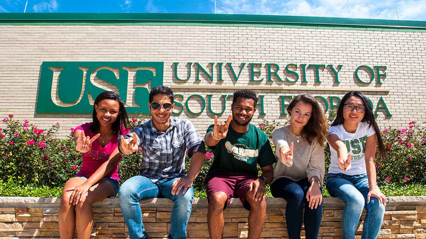 University of South Florida International Scholarships 2020 - 2021