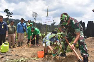 Penanaman Pohon Pasca Bencana Karhutla, Korem 042/Gapu Lakukan Penghijauan