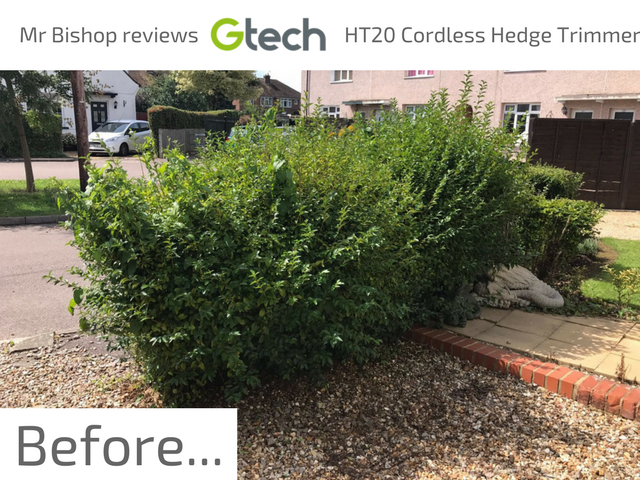 Using the GTech HT20 Cordless Hedge Trimmer before picture