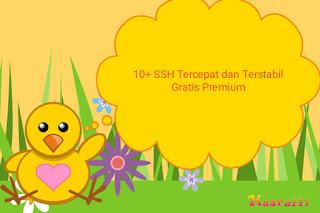10+ SSH Tercepat dan Terstabil Gratis Premium
